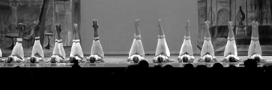 spectacle de danse classique